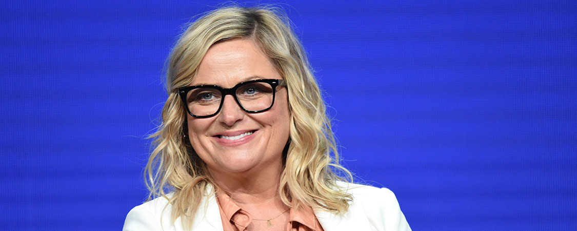 Amy Poehler attends the 2019 Summer TCA