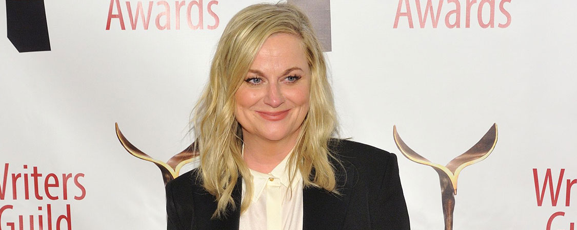 Amy Poehler attends the 72nd Annual Writers Guild Awards